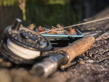 Fishing Activities Highlands Scotland